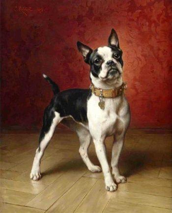 A French bulldog | Carl Reichert | oil painting