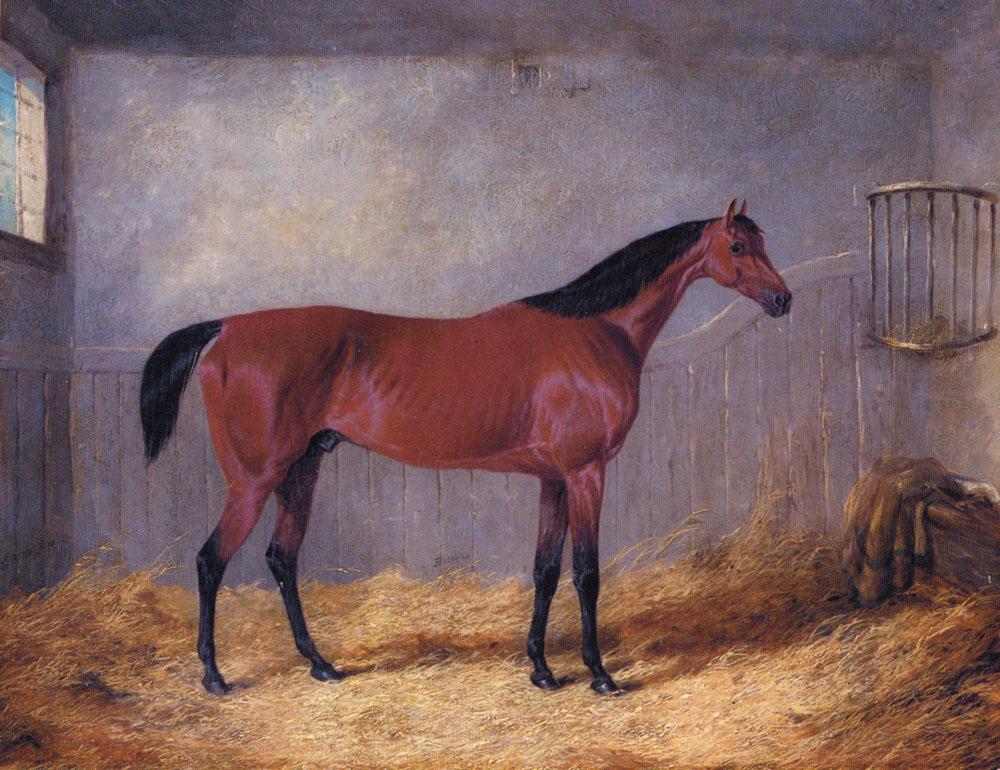 The Duke Of Graftons Bolivar | Jr John Frederick Herring | Oil Painting