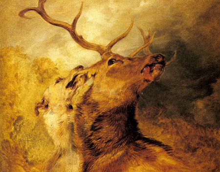 Stag and Hound | Sir Edwin Henry Landseer | Oil Painting