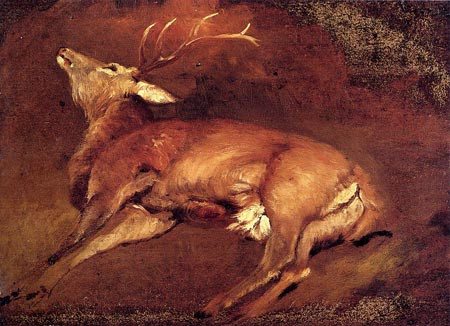 Study Of A Dead Stag | Sir Edwin Henry Landseer | Oil Painting