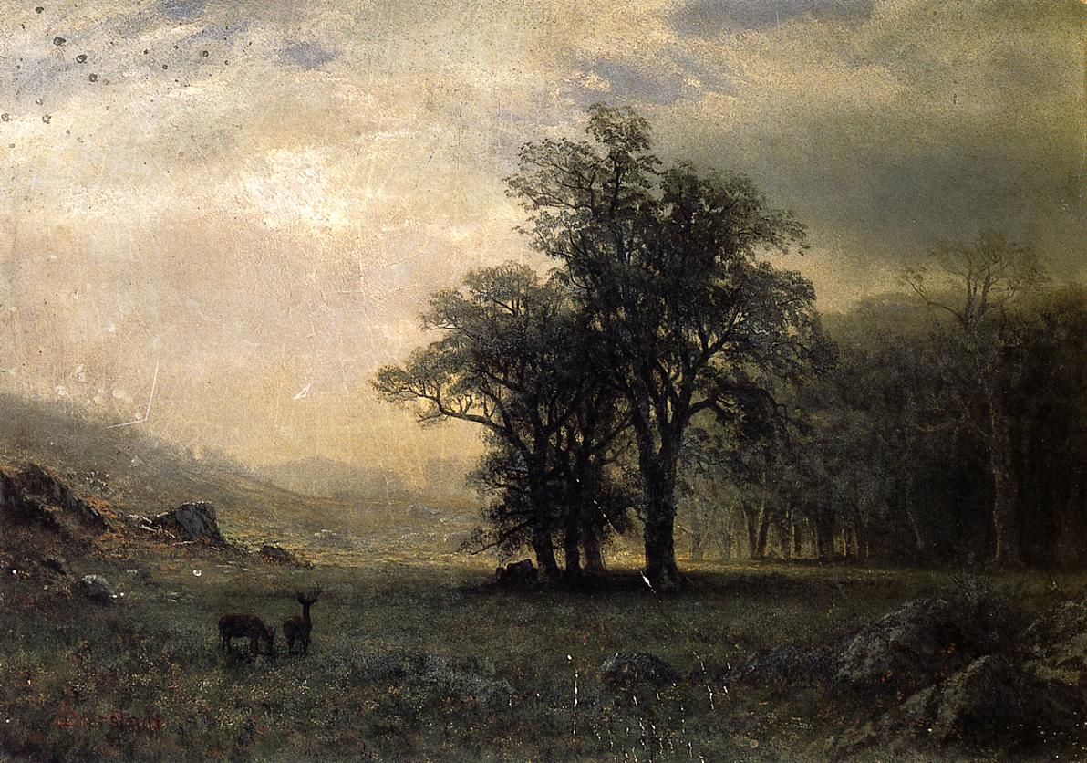 Deer in a Landscape Date   Albert Bierstadt   Oil Painting