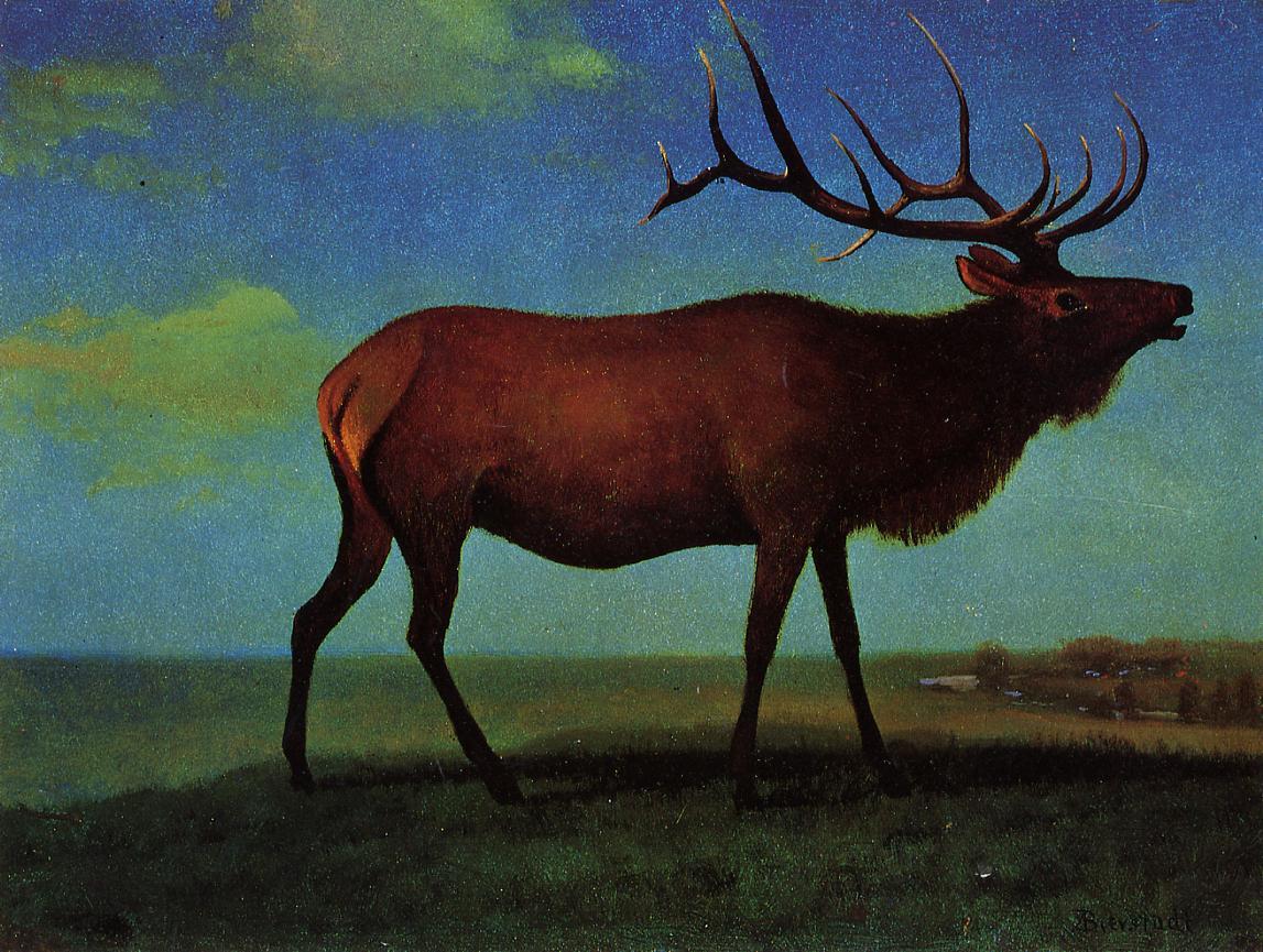 Elk | Albert Bierstadt | Oil Painting