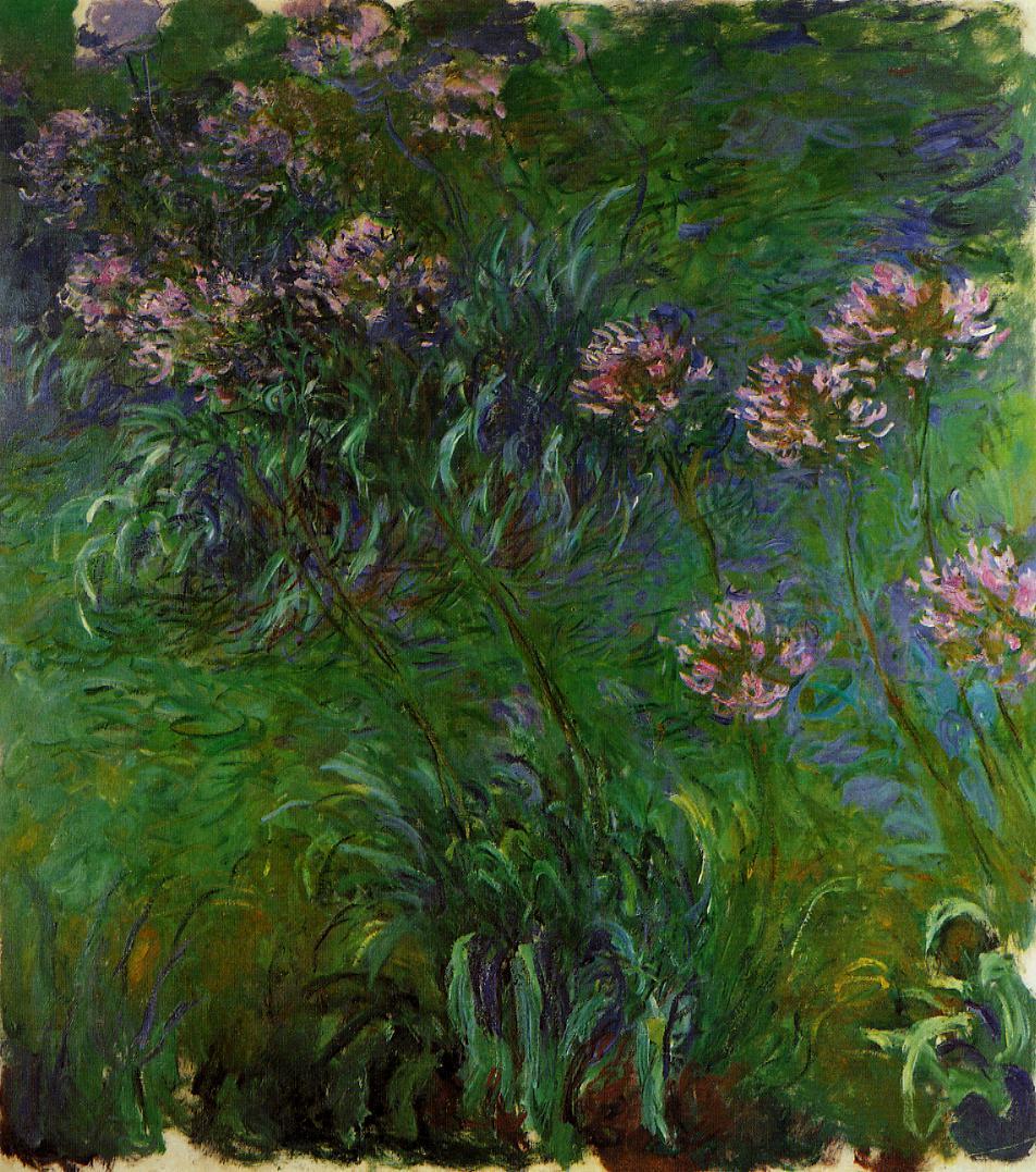 Agapanathus 1914-1917 | Claude Monet | Oil Painting