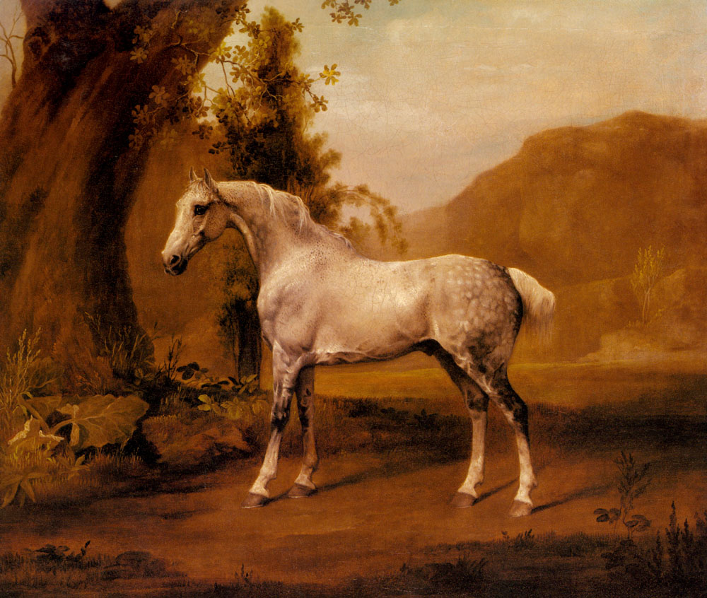 A Grey Stallion in a Landscape | George Stubbs | Oil Painting