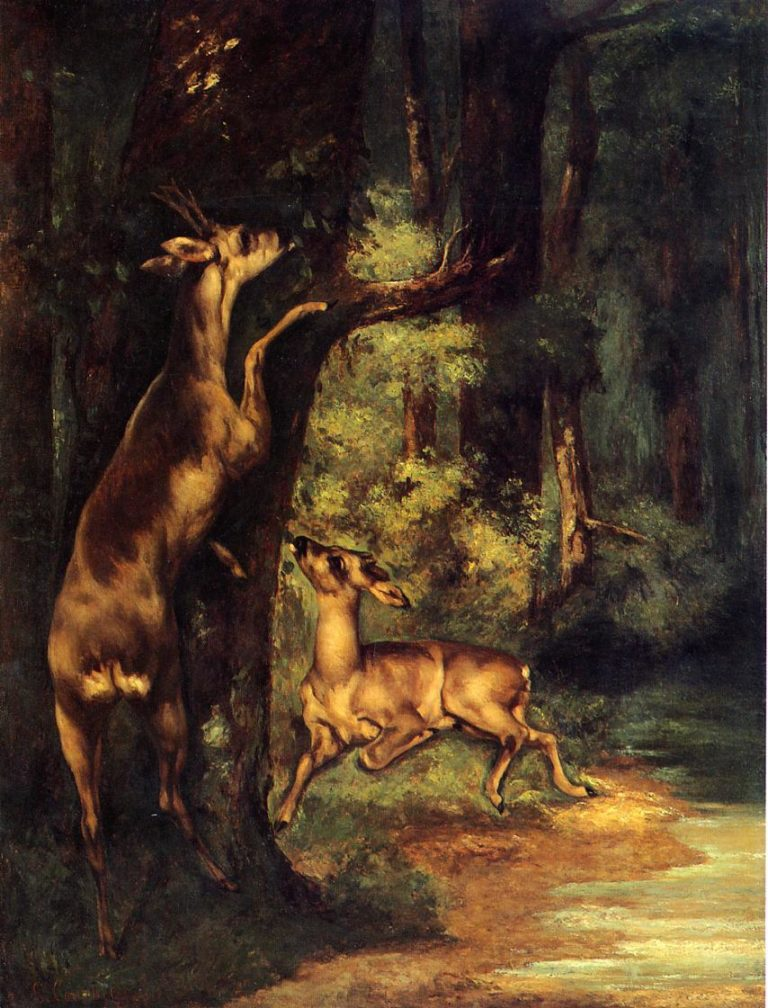 Male and Female Deer in the Woods 1864 | Gustave Courbet | Oil Painting