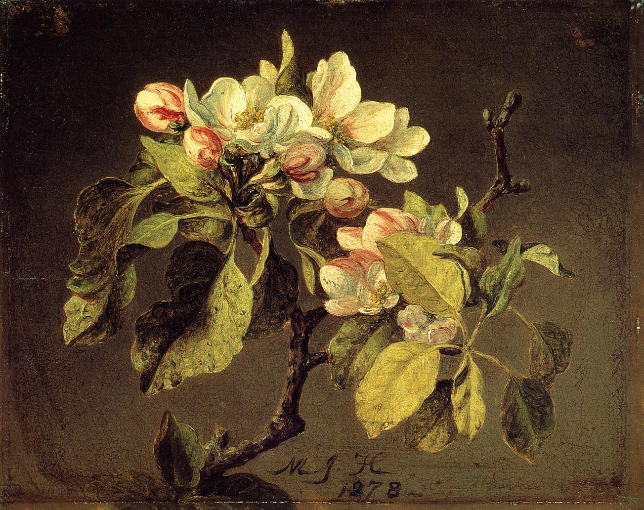 A Branch of Apple Blossoms and Buds 1878 | Martin Johnson Heade | Oil Painting
