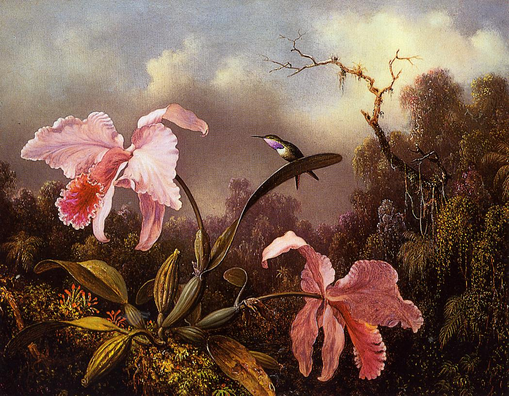 Orchids and Hummingbird 1872 | Martin Johnson Heade | Oil Painting