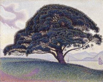 The Bonaventure Pine 1893 | Paul Signac | Oil Painting