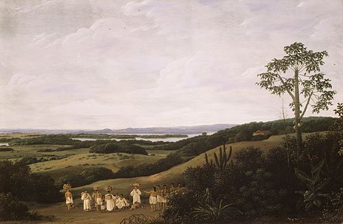 A Brazilian Landscape 1650 | Frans Post | Oil Painting
