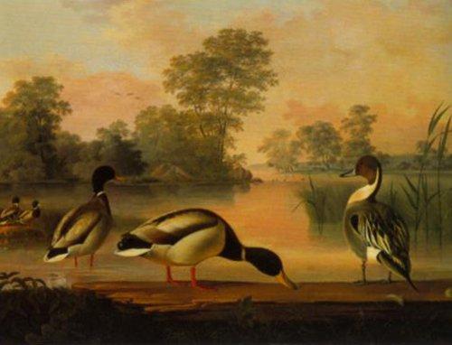 Ducks 1853 | Magnus von Wright | Oil Painting