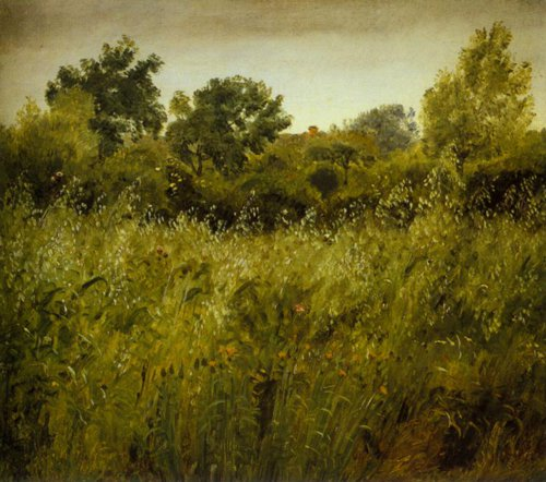Field of Oats near Vejby 1843 | P.C.Skovgaard | Oil Painting