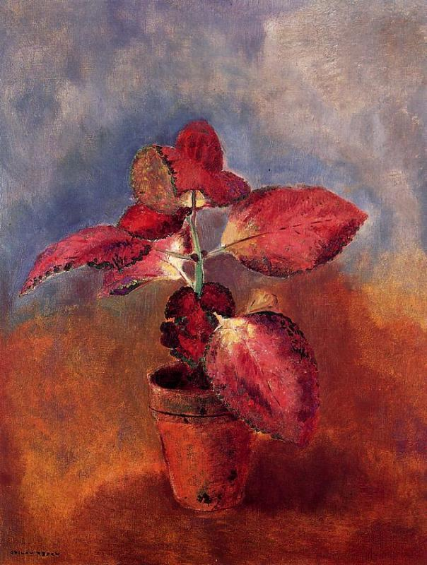 Begonia in a Pot 1910 | Odilon Redon | Oil Painting