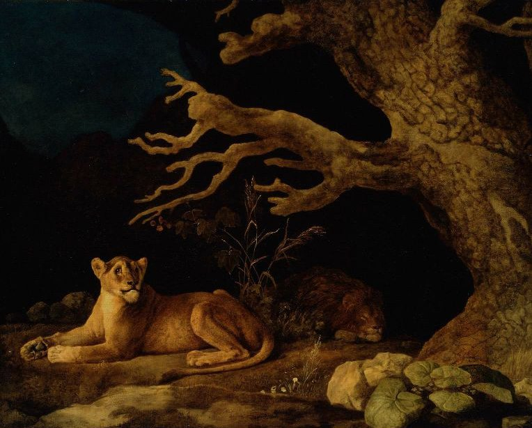Lion and Lioness 1771 | George Stubbs | oil painting