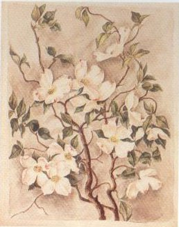 Flowering Dogwood | Caroline Harrison | oil painting