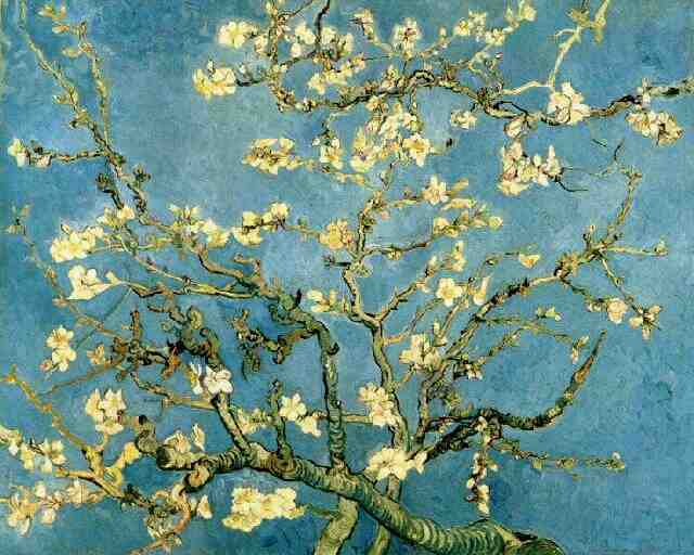 Blossoming Almond Tree | Vincent Van Gogh | oil painting