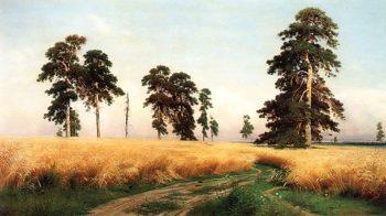 The Rye Field 1878   Ivan Shishkin   oil painting