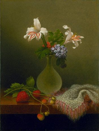 A Vase of Corn Lilies and Heliotrope | Martin Johnson Heade | oil painting