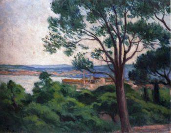 Saint Tropez   Maximilien Luce   oil painting