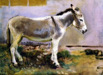 A Donkey | John Singer Sargent | oil painting