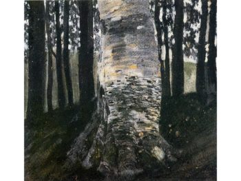 Birch in a Forest | Gustav Klimt | oil painting