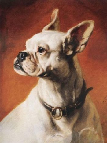 A French bulldog 2 | Carl Reichert | oil painting