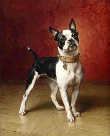 A French bulldog | Carl Reichert | oil painting