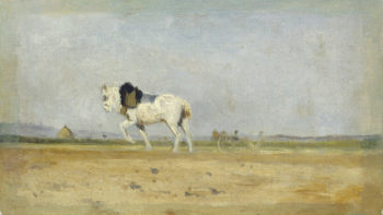 A Plow Horse in a Field