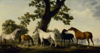 Five Brood Mares at the Duke of Cumberlands Stud Farm in Windsor Great Park | George Stubbs | oil painting