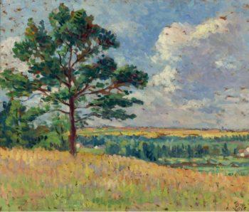 Landscape near Mereville 1905 | Maximilien Luce | oil painting