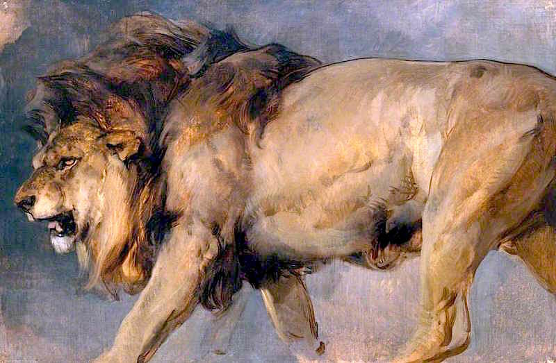study of a lion painting sir edwin landseer oil paintings