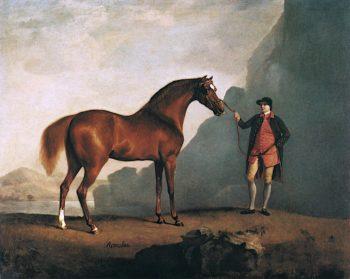 A Stallion Called Romulus