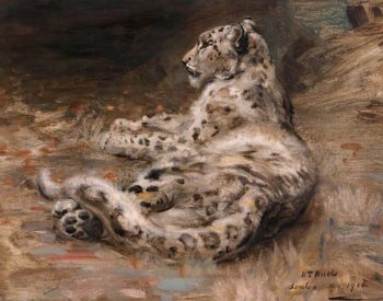 A Leopard | William Walls | oil painting