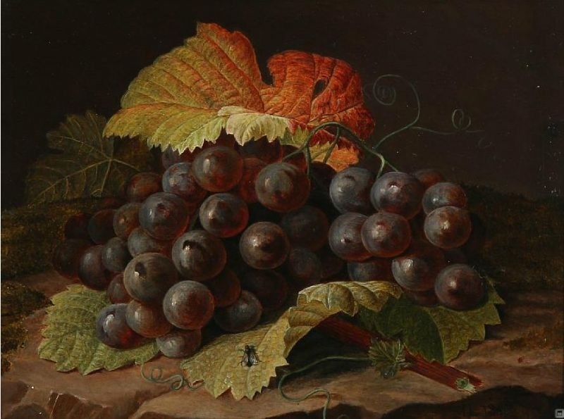 A cluster of blue grapes | Johan Laurentz | Oil Painting