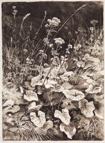White Flowers   Ivan Ivanovich Shishkin   Oil Painting