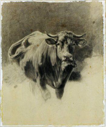 A Bull   Ivan Ivanovich Shishkin   Oil Painting