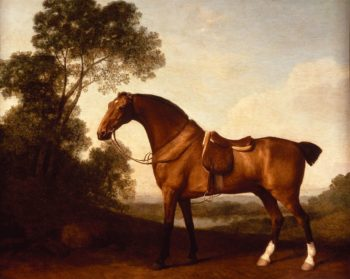 A Saddled Bay Hunter   George Stubbs   Oil Painting