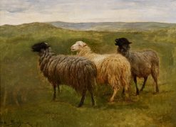 Three Sheep in a Landscape   Rosa Bonheur   Oil Painting